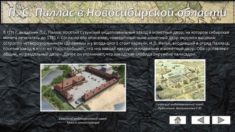 П. С. Паллас в Новосибирской области В 1771 г. академик П. С. Паллас посетил