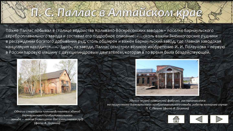 П. С. Паллас в Алтайском крае Позже Паллас побывал в столице ведомства Колывано-Воскресенских заводов
