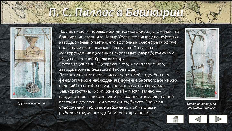 П. С. Паллас в Башкирии Крупяная мельница Паллас пишет о первых нефтяниках-башкирах, упоминая что