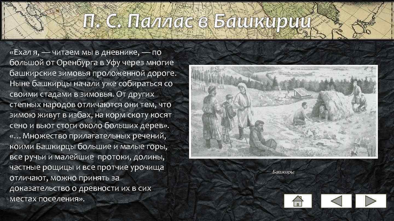 П. С. Паллас в Башкирии «Ехал я, — читаем мы в дневнике, — по