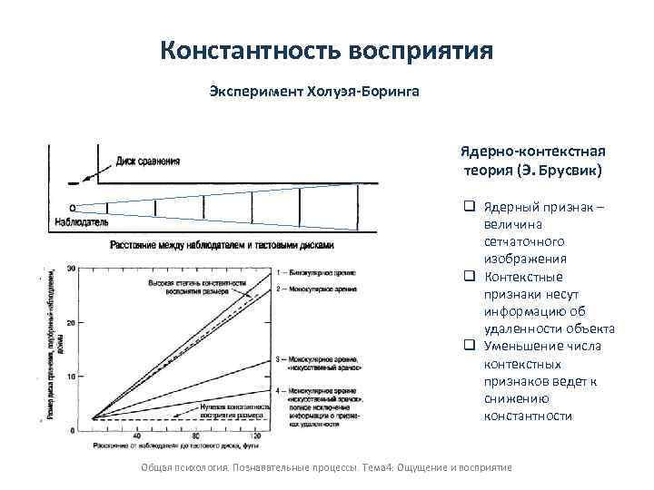 Основные концепции константности восприятия ядерно-контекстная теория, теория перцептивны форум контекстная реклама киев