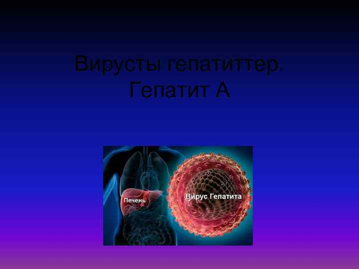 Вирусты гепатиттер. Гепатит А