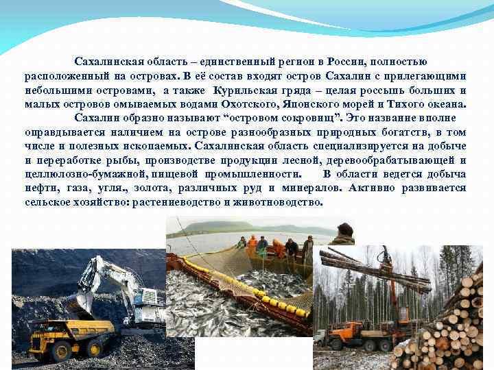 Сахалинская область – единственный регион в России, полностью расположенный на островах. В её состав