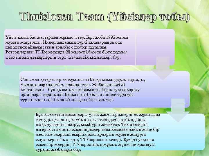 Thuislozen Team (Үйсіздер тобы) Үйсіз қаңғыбас жастармен жұмыс істеу. Бұл жоба 1992 жылы жүзеге