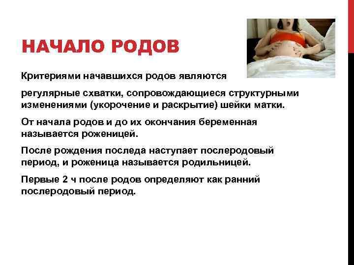 НАЧАЛО РОДОВ Критериями начавшихся родов являются регулярные схватки, сопровождающиеся структурными изменениями (укорочение и раскрытие)