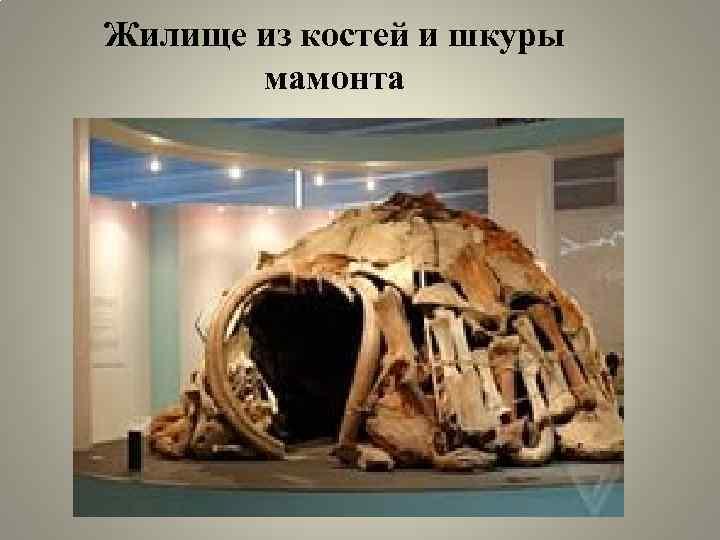 Жилище из костей и шкуры мамонта