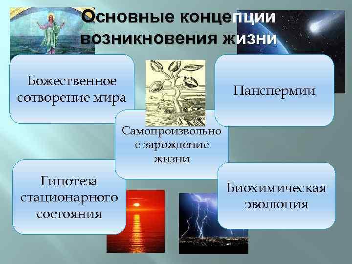 Концепции шпаргалка основные происхождения жизни