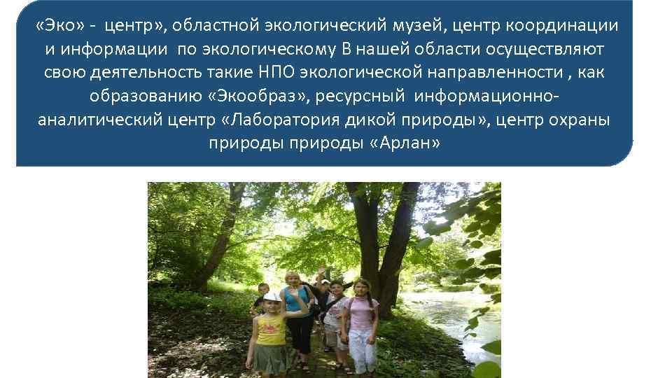 «Эко» - центр» , областной экологический музей, центр координации и информации по экологическому