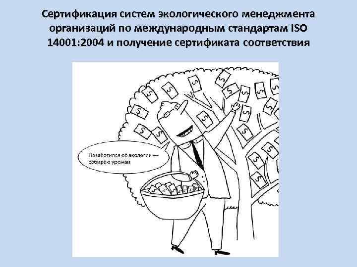 Сертификация систем экологического менеджмента организаций по международным стандартам ISO 14001: 2004 и получение сертификата