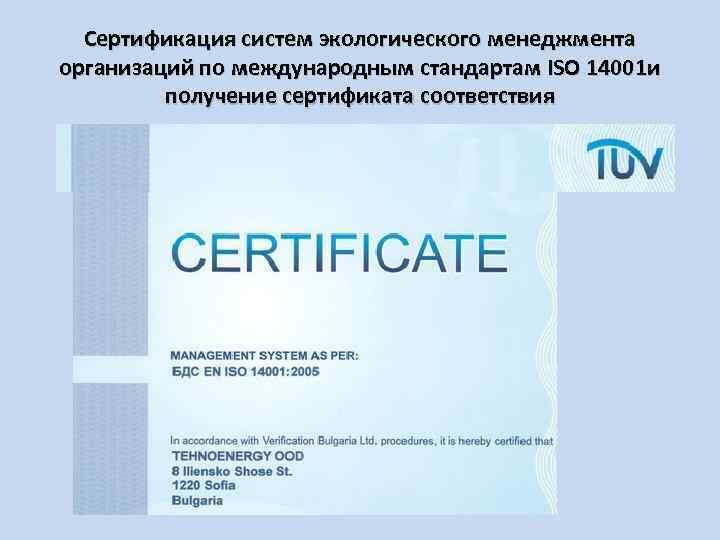 Сертификация систем экологического менеджмента организаций по международным стандартам ISO 14001 и получение сертификата соответствия