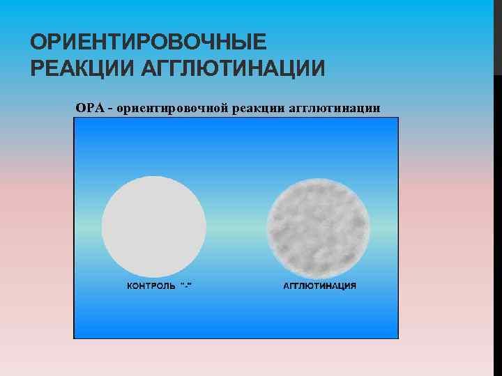 ОРИЕНТИРОВОЧНЫЕ РЕАКЦИИ АГГЛЮТИНАЦИИ ОРА ориентировочной реакции агглютинации