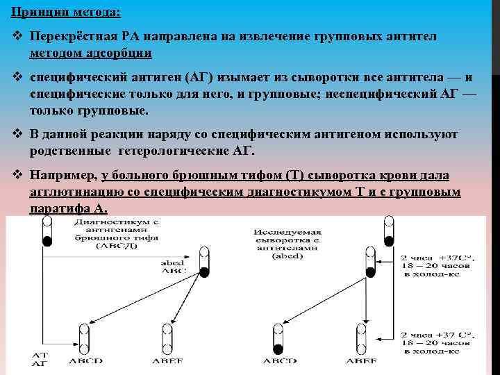 Принцип метода: v Перекрёстная РА направлена на извлечение групповых антител методом адсорбции v специфический