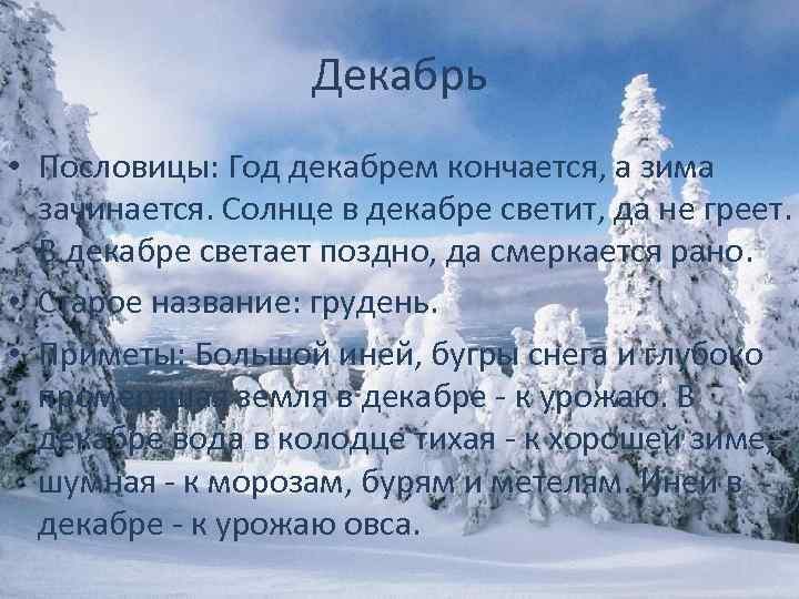 фотографии народные приметы и пословицы зимы в картинках телят