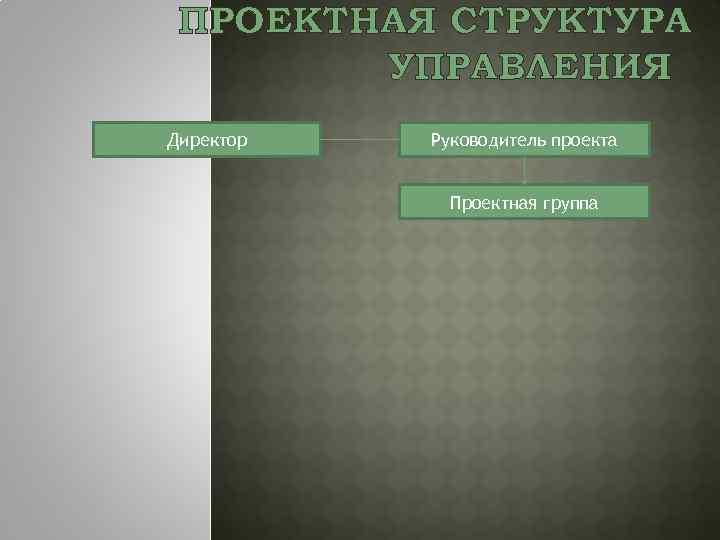 ПРОЕКТНАЯ СТРУКТУРА УПРАВЛЕНИЯ Директор Руководитель проекта Проектная группа
