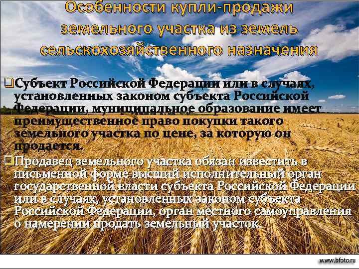 Оборот земель сельскохозяйственного назначения в схемах