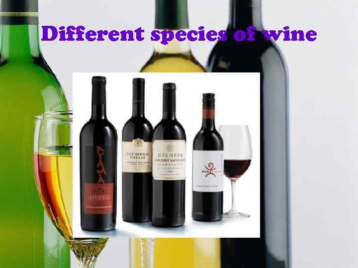 Different species of wine
