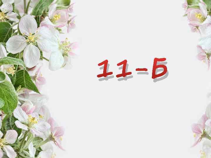11 -Б