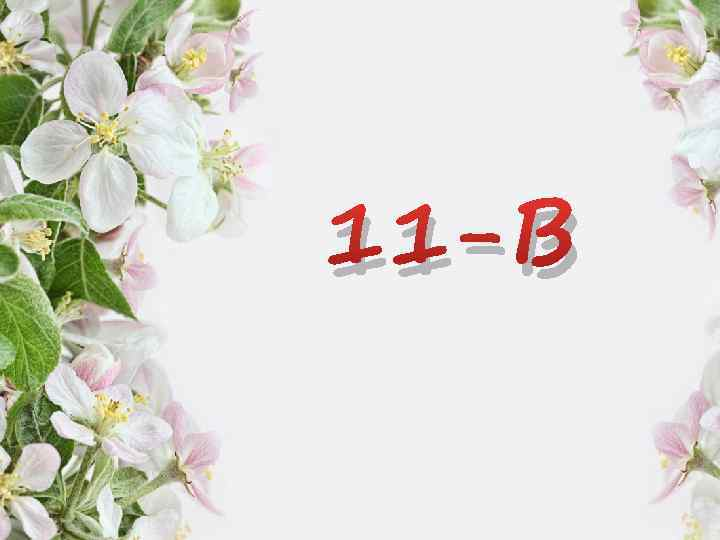 11 -В