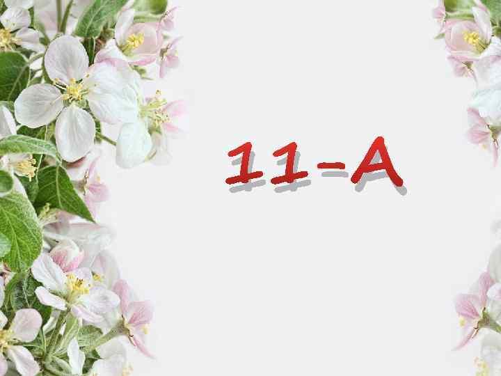 11 -А