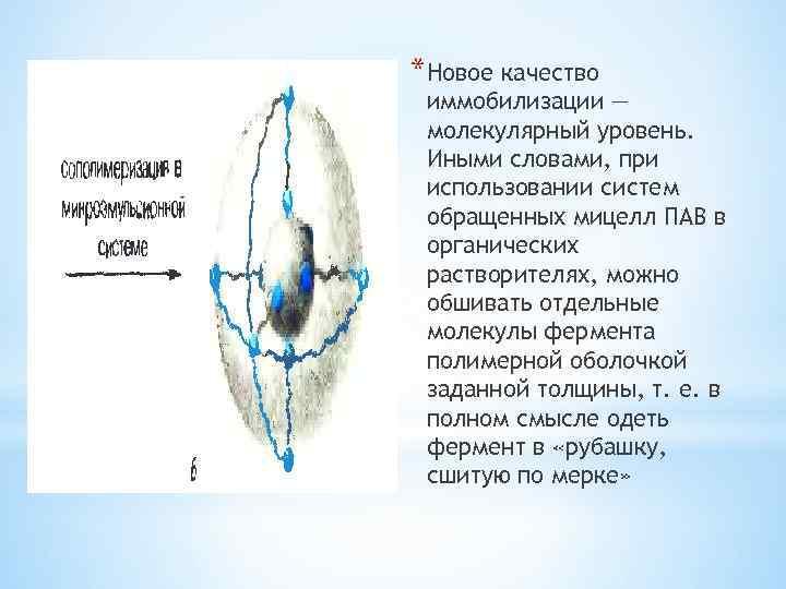 *Новое качество иммобилизации — молекулярный уровень. Иными словами, при использовании систем обращенных мицелл ПАВ
