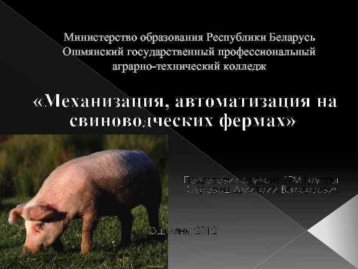 Министерство образования Республики Беларусь Ошмянский государственный профессиональный аграрно-технический колледж «Механизация, автоматизация на свиноводческих фермах»