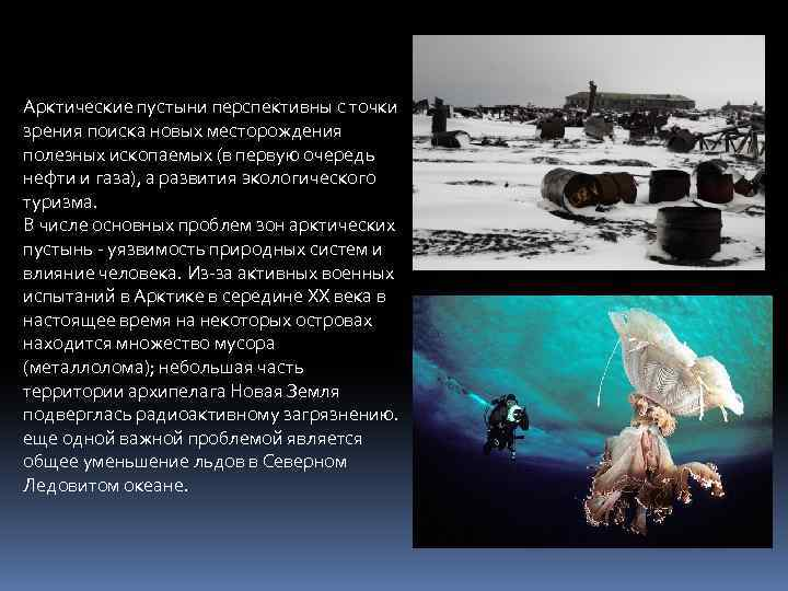 Арктические пустыни перспективны с точки зрения поиска новых месторождения полезных ископаемых (в первую очередь