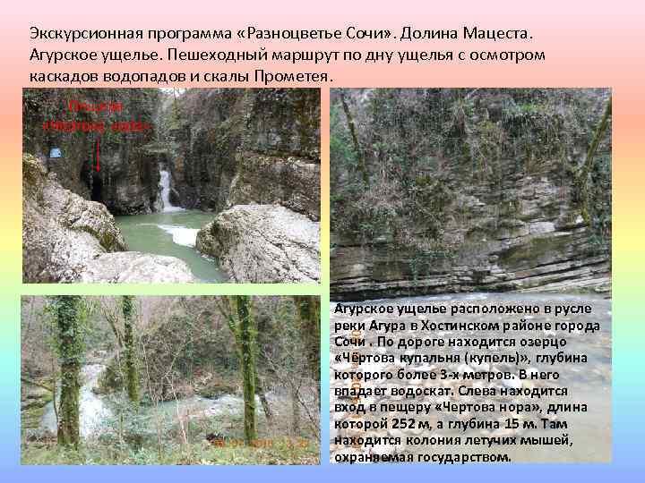 Экскурсионная программа «Разноцветье Сочи» . Долина Мацеста. Агурское ущелье. Пешеходный маршрут по дну ущелья