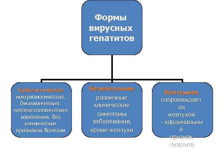 Формы вирусных гепатитов Субклиническая иммунологические, биохимические, патогистологические изменения, без клинических признаков болезни Безжелтушная различные