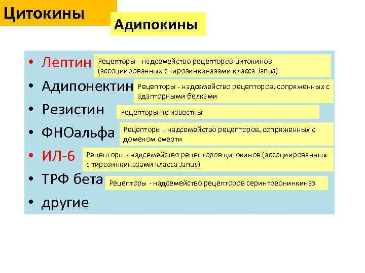 Цитокины • • Адипокины цитокинов Лептин Рецепторы - надсемейство рецепторовкласса Janus) (ассоциированных с тирозинкиназами