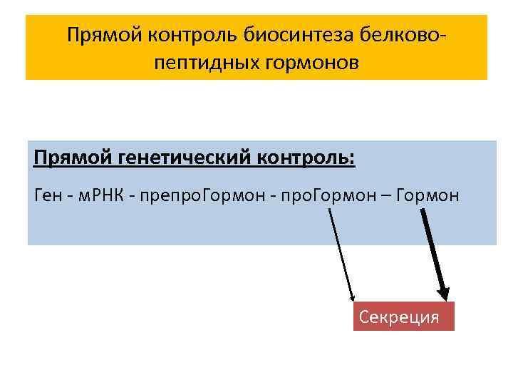 Прямой контроль биосинтеза белковопептидных гормонов Прямой генетический контроль: Ген - м. РНК - препро.