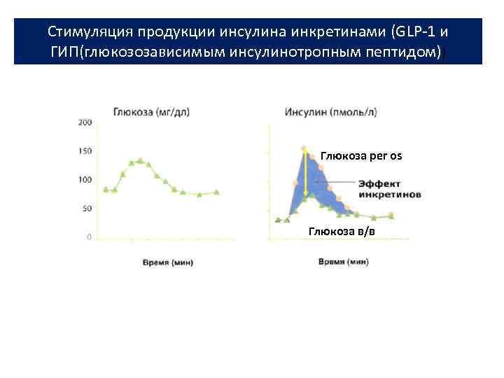 Стимуляция продукции инсулина инкретинами (GLP-1 и ГИП(глюкозозависимым инсулинотропным пептидом)) Глюкоза per os Глюкоза в/в