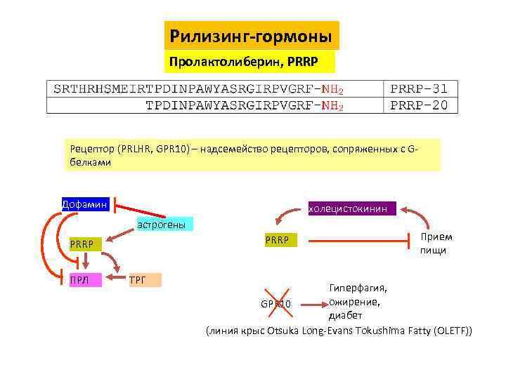 Рилизинг-гормоны Пролактолиберин, PRRP Рецептор (PRLHR, GPR 10) – надсемейство рецепторов, сопряженных с Gбелками Дофамин