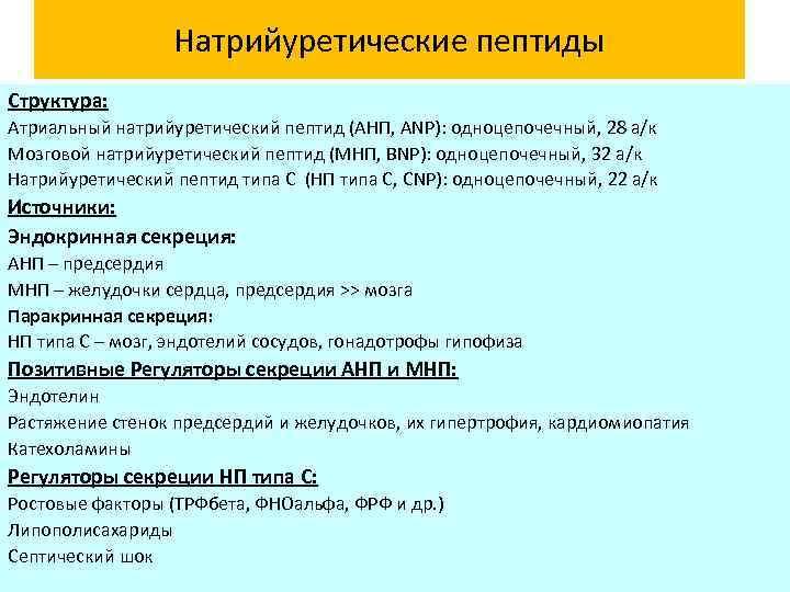 Натрийуретические пептиды Структура: Атриальный натрийуретический пептид (АНП, ANP): одноцепочечный, 28 а/к Мозговой натрийуретический пептид