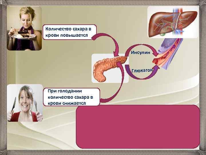 От чего повышается инсулин в крови