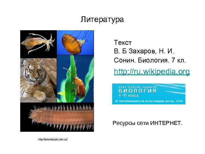 Литература Текст В. Б Захаров, Н. И. Сонин. Биология. 7 кл. http: //ru. wikipedia.