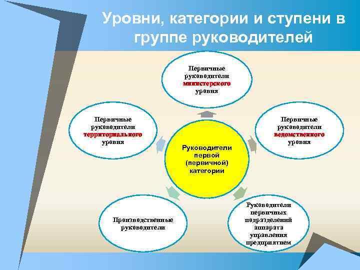 Уровни, категории и ступени в группе руководителей Первичные руководители министерского уровня Первичные руководители территориального