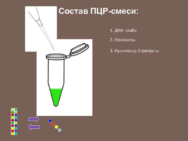Состав ПЦР-смеси: 1. ДНК-проба 2. Праймеры 3. Нуклеозид-3 -фосфаты