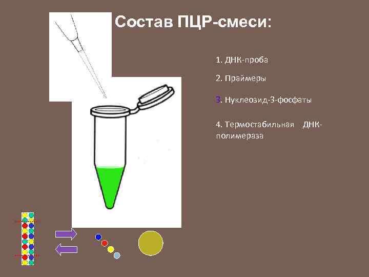 Состав ПЦР-смеси: 1. ДНК-проба 2. Праймеры 3. Нуклеозид-3 -фосфаты 4. Термостабильная ДНКполимераза