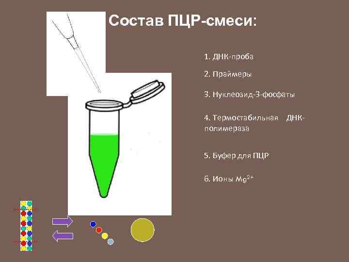 Состав ПЦР-смеси: 1. ДНК-проба 2. Праймеры 3. Нуклеозид-3 -фосфаты 4. Термостабильная ДНКполимераза 5. Буфер