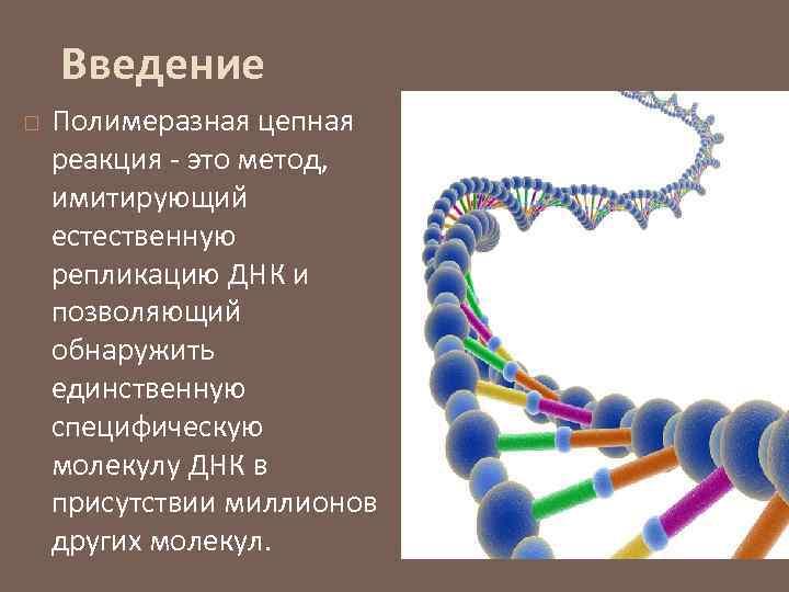 Введение Полимеразная цепная реакция - это метод, имитирующий естественную репликацию ДНК и позволяющий обнаружить