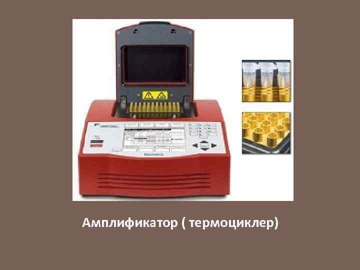 Амплификатор ( термоциклер)