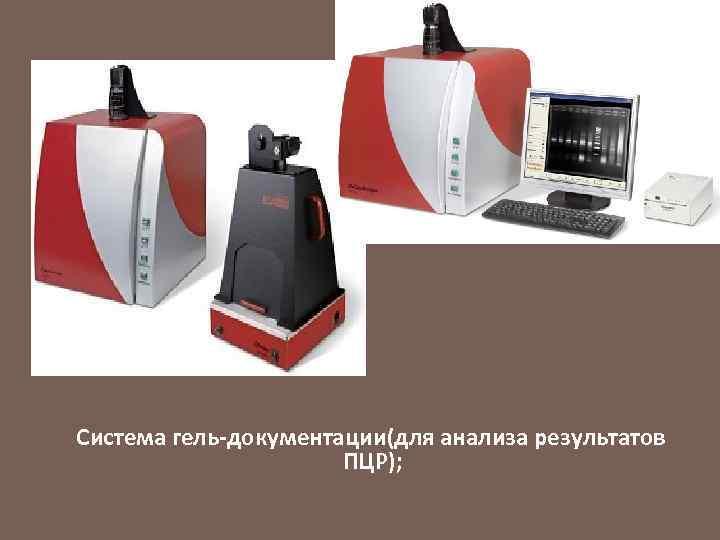 Система гель-документации(для анализа результатов ПЦР);