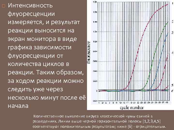 Интенсивность флуоресценции измеряется, и результат реакции выносится на экран монитора в виде графика
