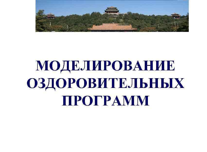 ДОКТОР ШМИДТ МОДЕЛИРОВАНИЕ ОЗДОРОВИТЕЛЬНЫХ ПРОГРАММ