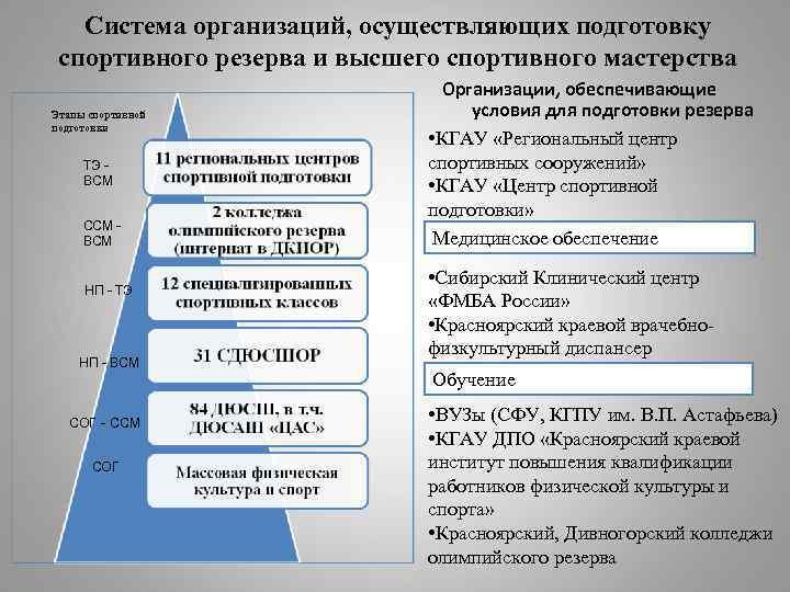 Система организаций, осуществляющих подготовку спортивного резерва и высшего спортивного мастерства Этапы спортивной подготовки ТЭ