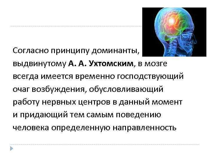 Согласно принципу доминанты, выдвинутому А. А. Ухтомским, в мозге всегда имеется временно господствующий очаг
