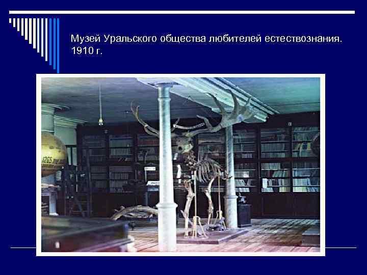 Музей Уральского общества любителей естествознания. 1910 г.