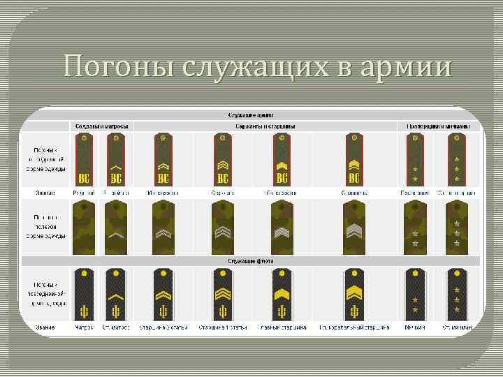 Все погоны картинки армии русской