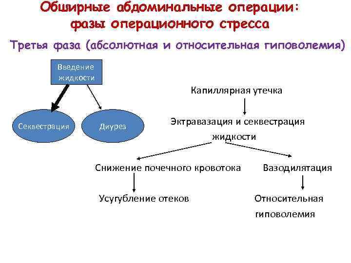 Обширные абдоминальные операции: фазы операционного стресса Третья фаза (абсолютная и относительная гиповолемия) Введение жидкости