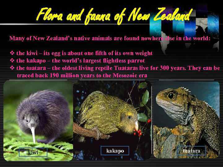 Flora and fauna of New Zealand Many of New Zealand's native animals are found